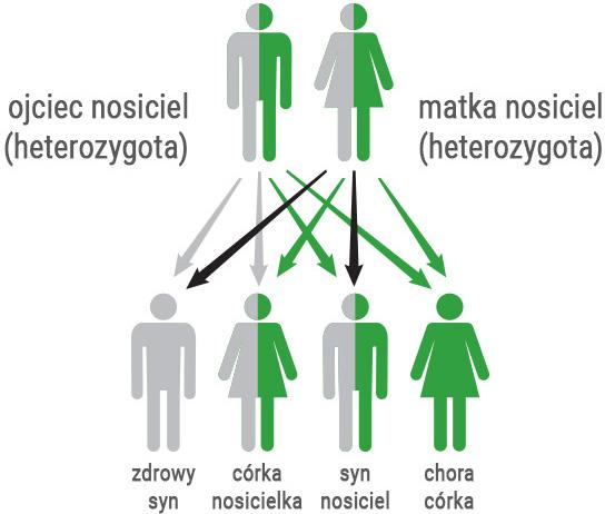 hemochromatoza dziedziczenie