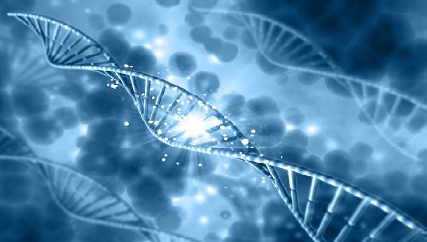 Genetyczne.pl patronem medialnym konferencji nutrigenomicznej
